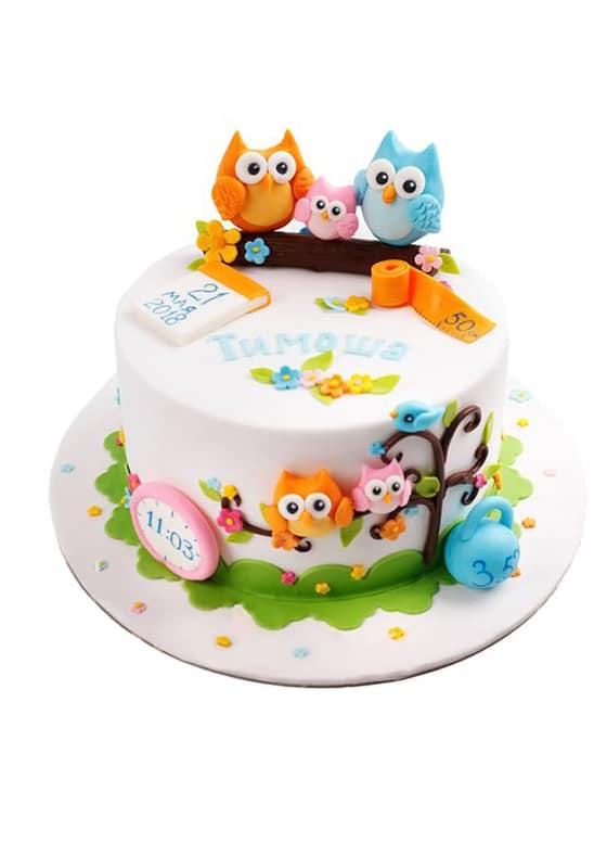 Торт на рождение Ребенка с совами